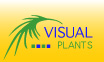 Visual Plants
